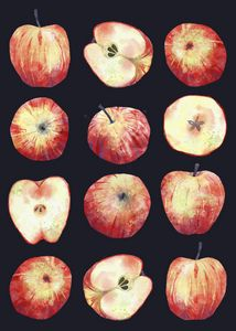 Apples in the Dark - Nic Squirrell