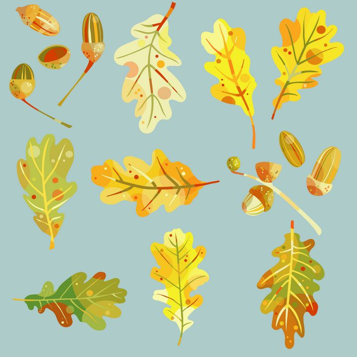 Oak Leaves and Acorns on Blue - Nic Squirrell