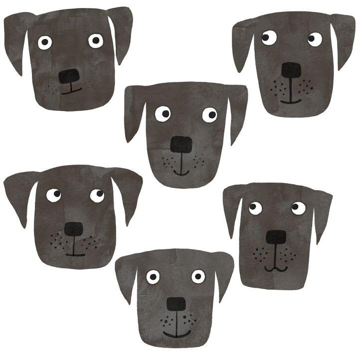 Black Labrador Retriever Dogs - Nic Squirrell