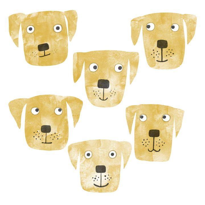 Golden Labrador Retriever Dogs - Nic Squirrell