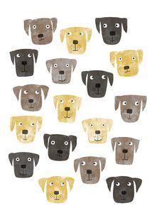 Labrador Retriever Dogs - Nic Squirrell