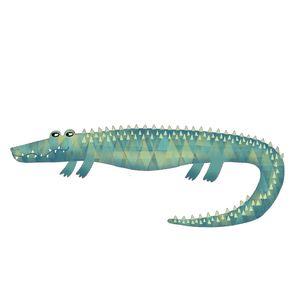 Alligator or Crocodile? - Nic Squirrell