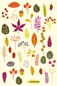 Autumn Nature Bits - Nic Squirrell