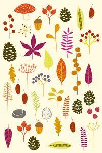 Autumn Nature Bits - Nic Squirrell