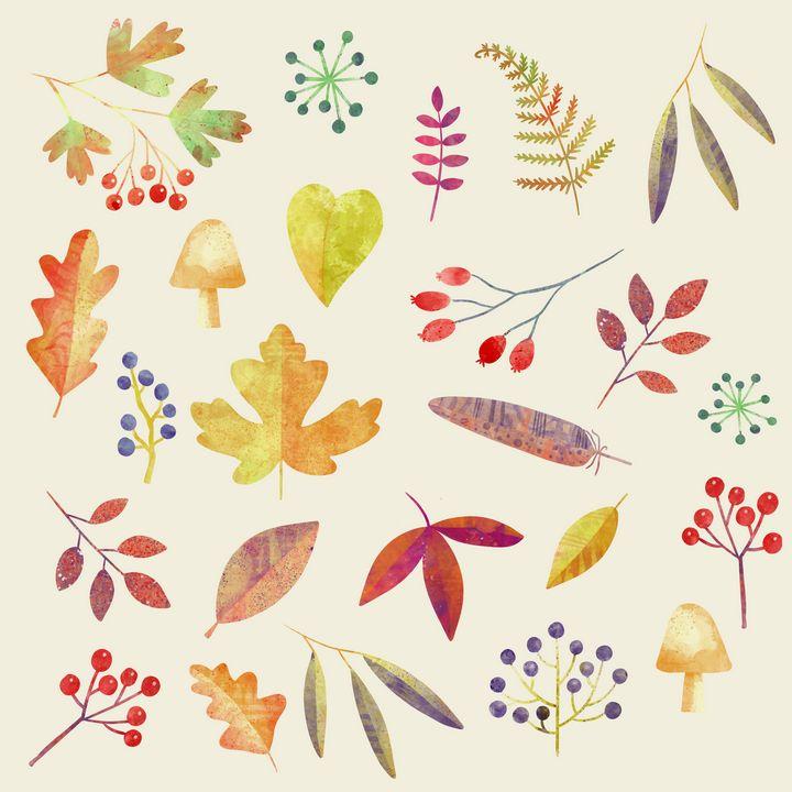 Autumn Walks - Nic Squirrell