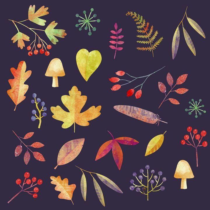 Autumn Walks in the Dark - Nic Squirrell