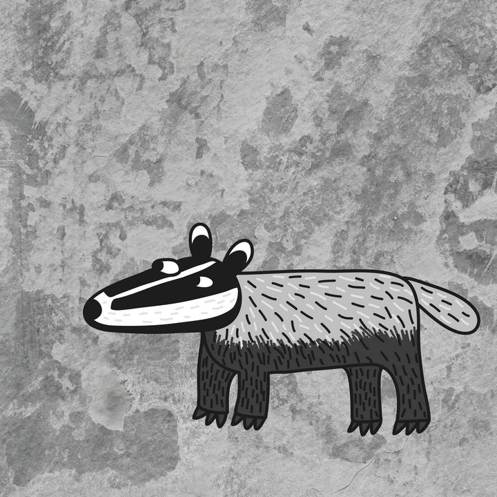 Badger - Nic Squirrell