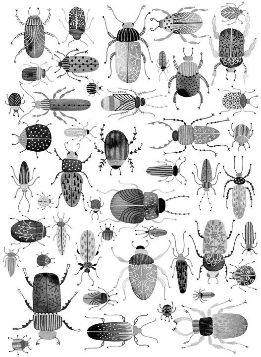 Inky Beetles - Nic Squirrell
