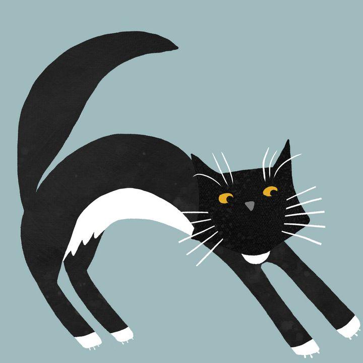 Black & White Tuxedo Cat Stretching - Nic Squirrell