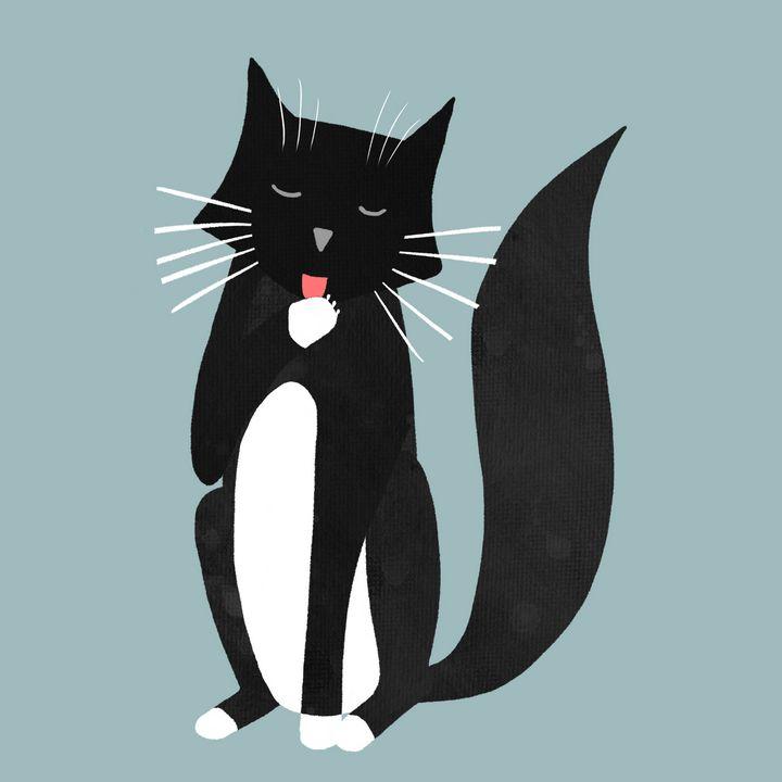 Black and White Tuxedo Cat Washing - Nic Squirrell