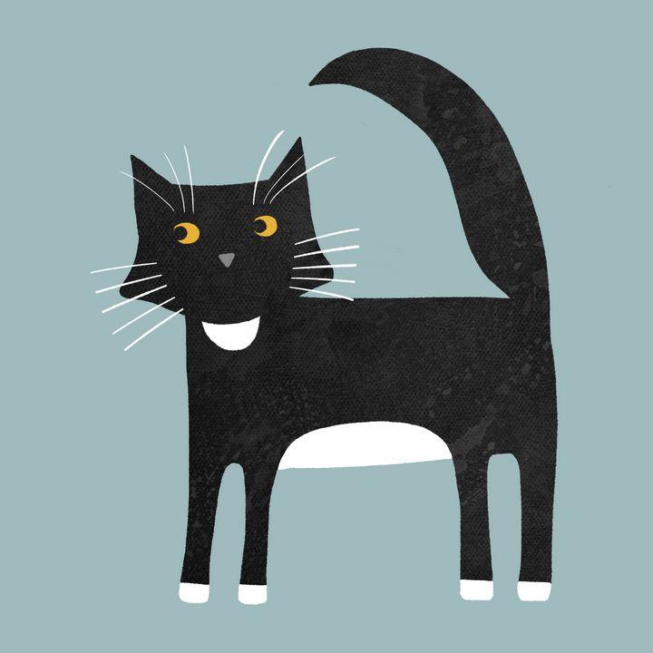 Black and White Tuxedo Cat - Nic Squirrell