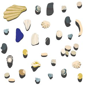 Beachcombing - Nic Squirrell
