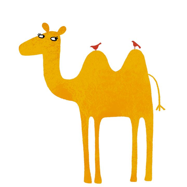 Camel - Nic Squirrell