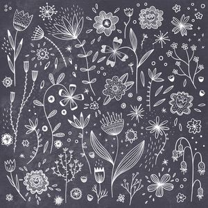 Chalkboard Flowers - Nic Squirrell