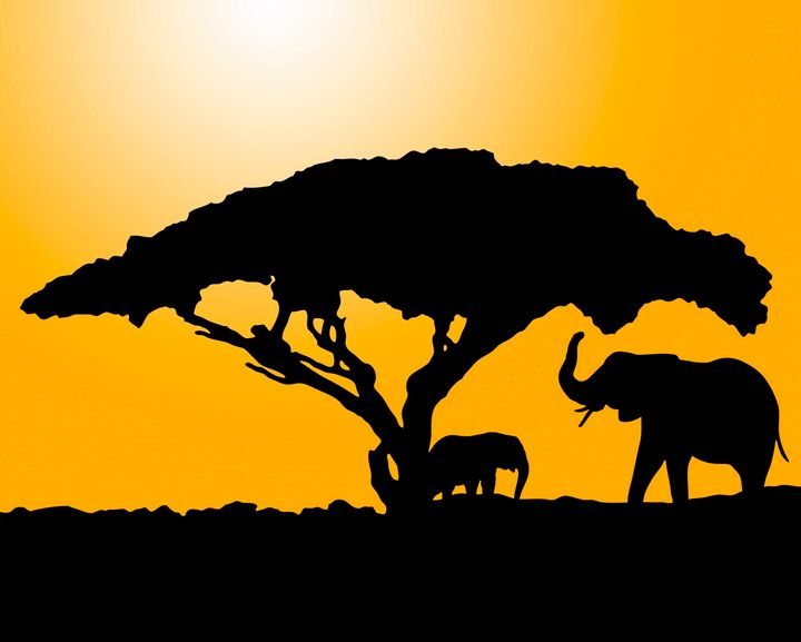 African Scene - For The Love Of Animals