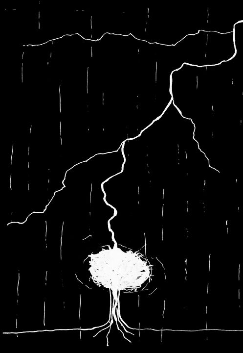 Lightning - Amanda Reid