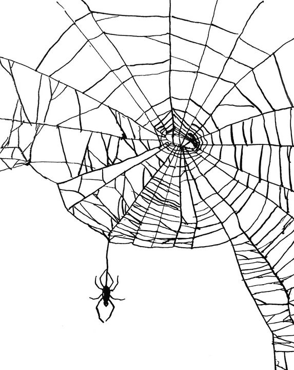 Web - Amanda Reid