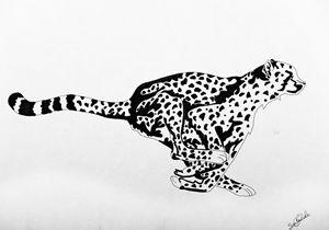 Cheetah - Summer Clinkscale