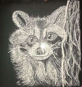 The Racoon