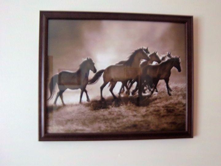 """Wild Horses"" - gsb art gallery"