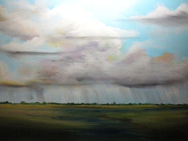 Summer rain over marsh - Douglas Harn