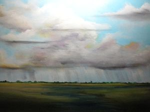 Summer rain over marsh