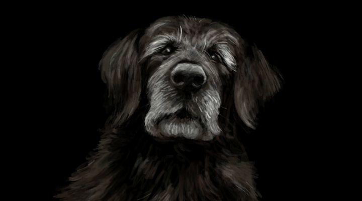 Dog - Quick2Draw