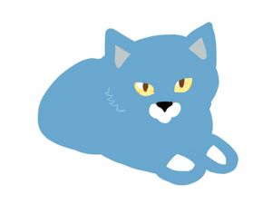 Cat light blue