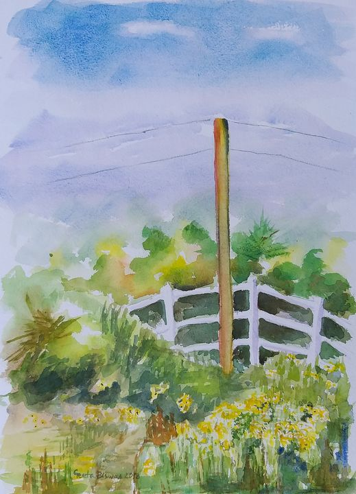 White fence and sunflowers - GeetaBiswas