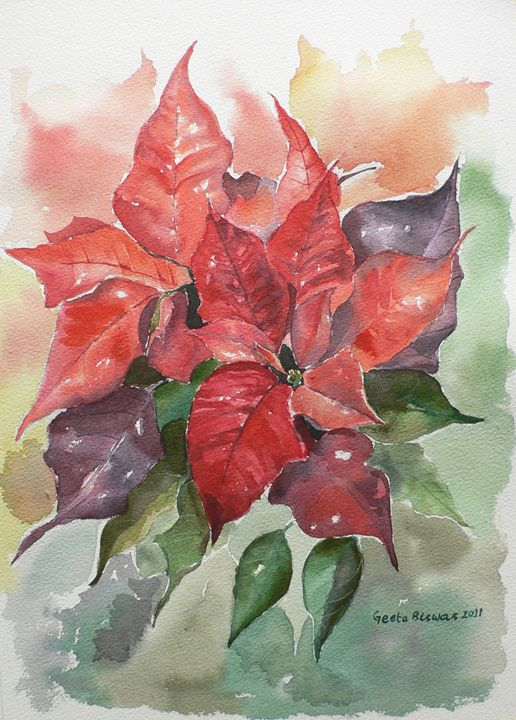 Poinsettias - GeetaBiswas