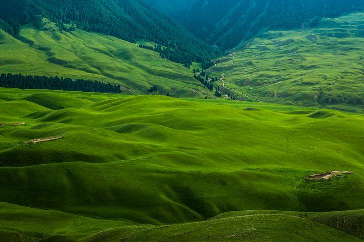 grassland - My Secret Art