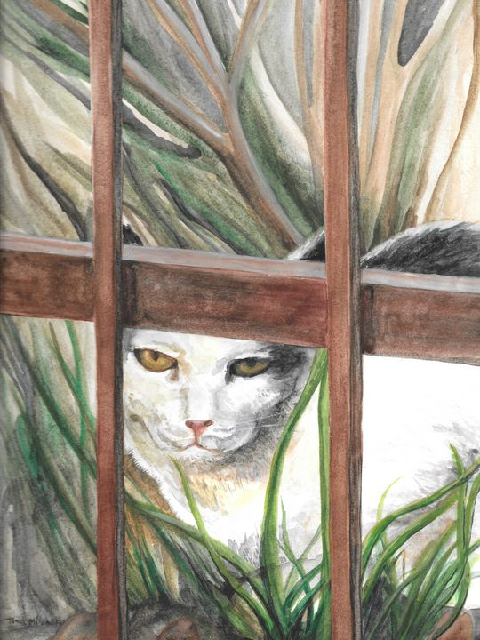 Wary Cat - Tina Mitchell