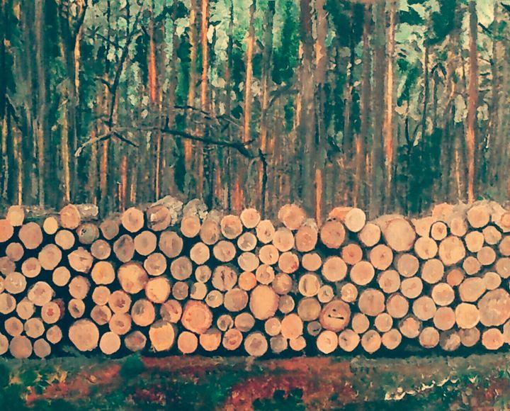 Bois de sapin - Cothy'Art
