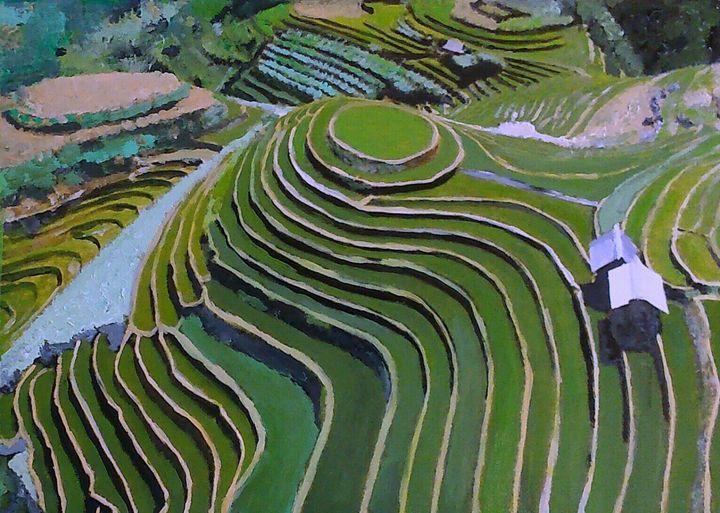 Rizières en terrasse du nord Vietnam - Cothy'Art