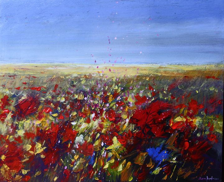 Poppy field - Mario Zampedroni