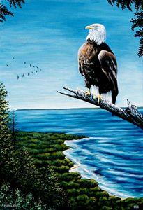 Eagle & the 12