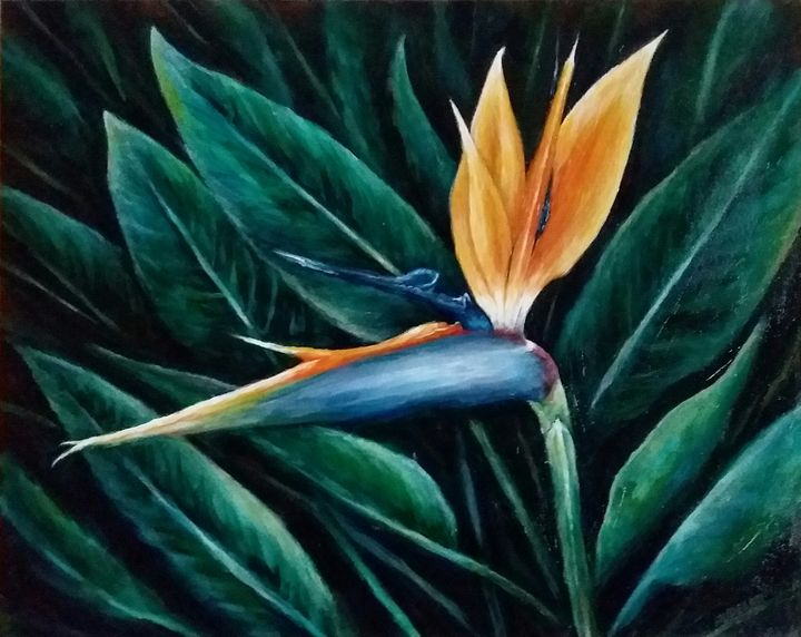 Bird of Paradise - Art of PUDELKO