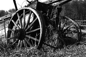Wooden Wagon - Photography of Mark Polege