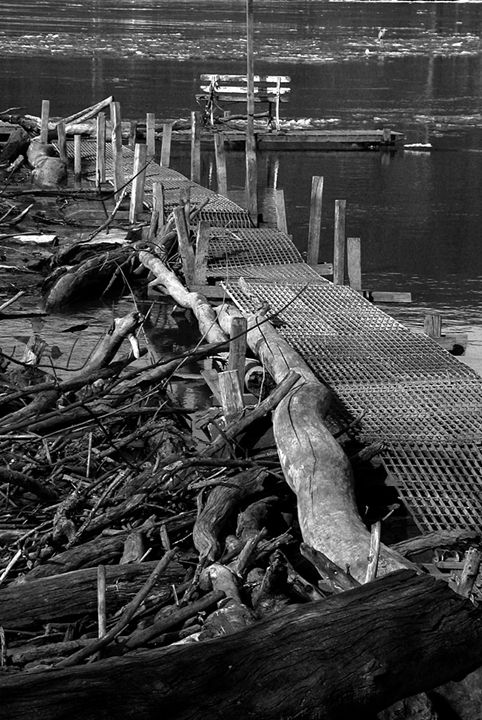 The Old Dock - Photography of Mark Polege