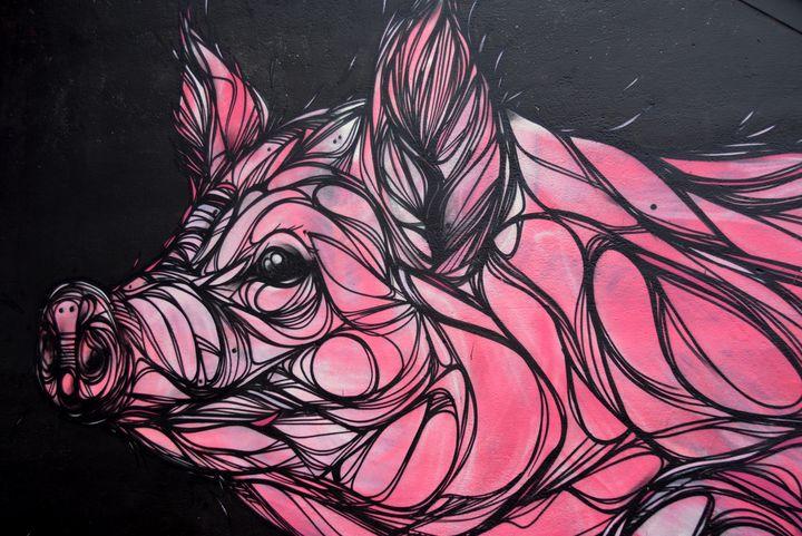 Pink Pig - REGAL