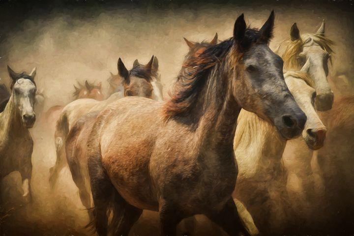 Running Horses - REGAL