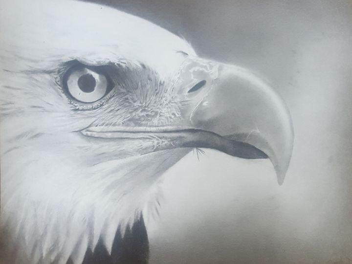 Eagle head - DeSa066
