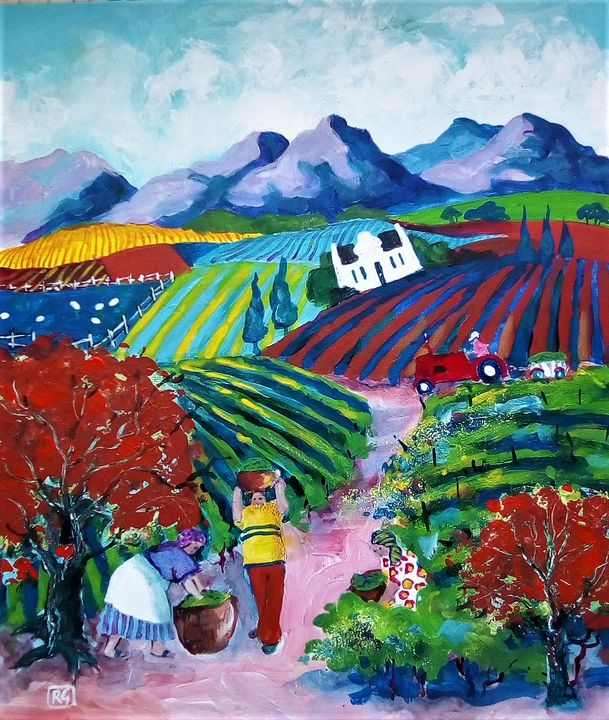 gathering grape harvest in winelands - galleroa