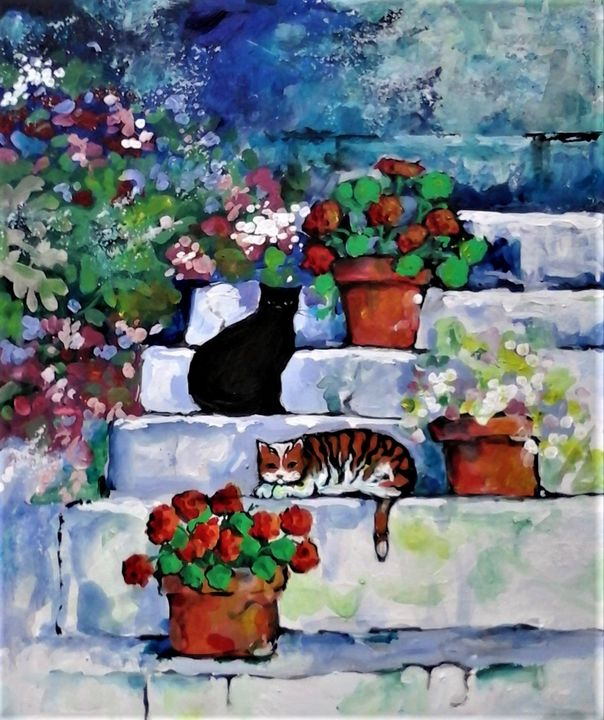 cats on the steps with geraniums - galleroa