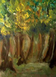 Centennial Forest