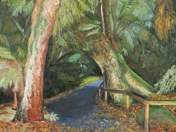 Walk to Russell Falls Tasmania - Jane Crawford