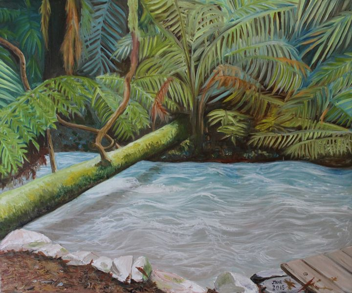 Running River from Russell Falls - Jane Crawford