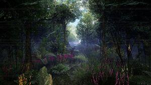 Forgotten Path