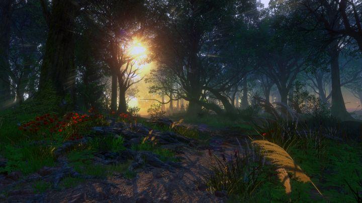 Morning Shine - M.C. Bauer