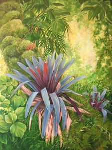 Tropical Forest Bromeliads
